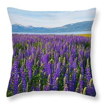 Tahoe In Summer Throw Pillow
