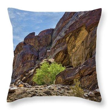 Tahquitz Canyon Rocks Throw Pillow