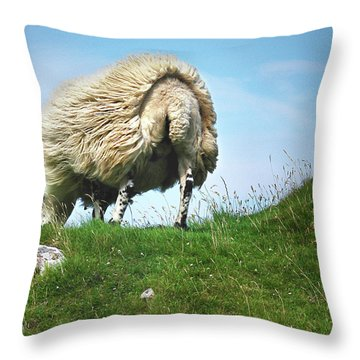 Tail Wind Throw Pillow