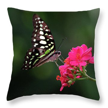 Tailed Jay Butterfly -graphium Agamemnon- On Pink Flower Throw Pillow