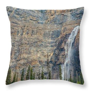 Throw Pillow featuring the photograph Takakkaw Falls 2009 by Jim Dollar