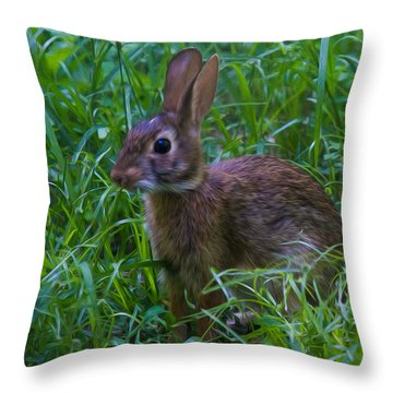 Throw Pillow featuring the photograph Take A Closer Look, I Got My Hair Did Boo by Robert L Jackson