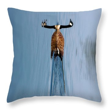 Take A Second Gander Throw Pillow