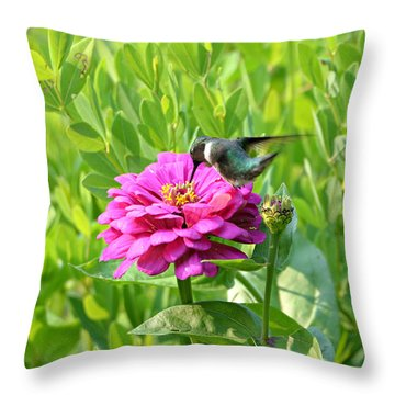 Throw Pillow featuring the photograph Take A Sip For Me by Lila Fisher-Wenzel