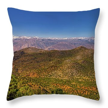 Take It All In Throw Pillow