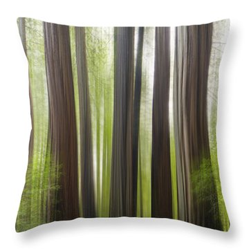 Take Me To The Forest Throw Pillow