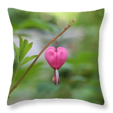 Take My Heart Throw Pillow