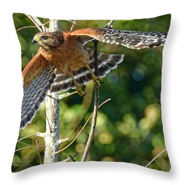 Throw Pillow featuring the photograph Take Off by Don Durfee