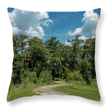 Take The Path Less Traveled Throw Pillow