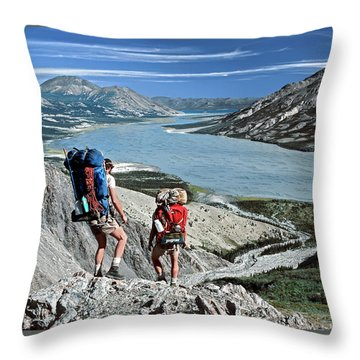 Take This View And Love It Throw Pillow