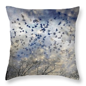 Throw Pillow featuring the photograph Taken Flight by Jan Amiss Photography