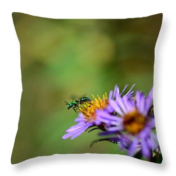 Takeoff Throw Pillow