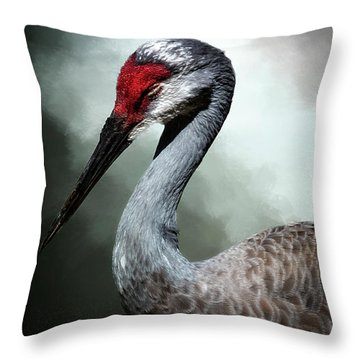 Taking 5 Throw Pillow