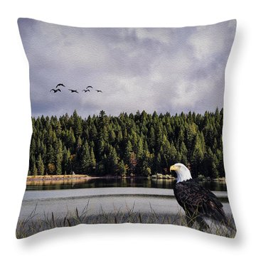 Throw Pillow featuring the photograph Taking A Break As Evening Falls by Diane Schuster