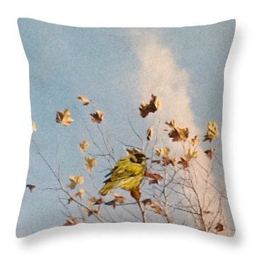 Taking A Break Throw Pillow by Catherine Swerediuk