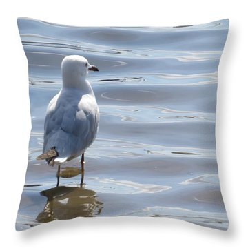 Taking A Dip Throw Pillow