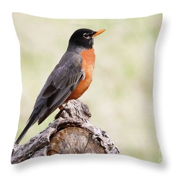 Taking A Moment Throw Pillow
