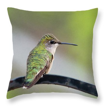 Taking A Rest Throw Pillow