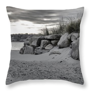 Taking A Walk At Fogland Throw Pillow