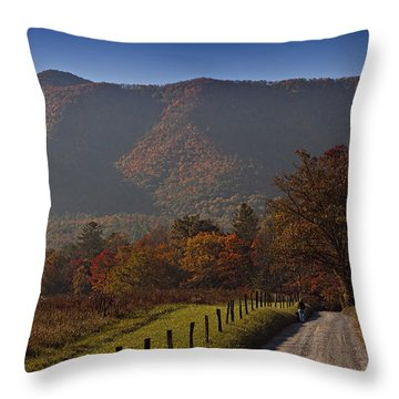 Taking A Walk Down Sparks Lane Throw Pillow