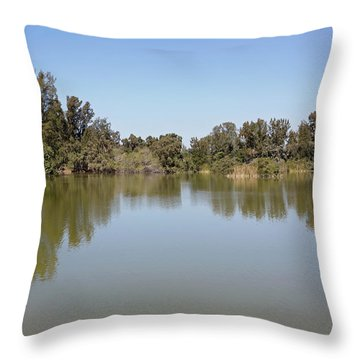 Throw Pillow featuring the photograph Taking A Walk by Kim Hojnacki