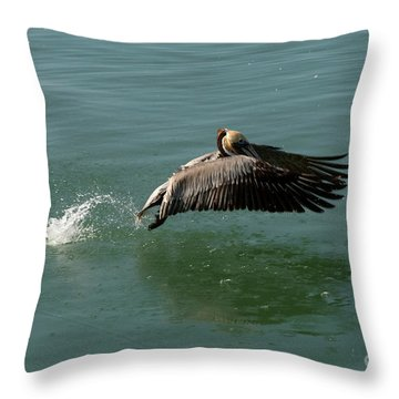 Throw Pillow featuring the photograph Taking Flight by Rod Wiens