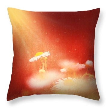 Throw Pillow featuring the photograph Taking In The Light by Greg Collins