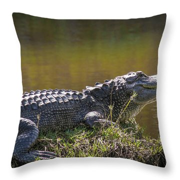Taking In The Sun Throw Pillow