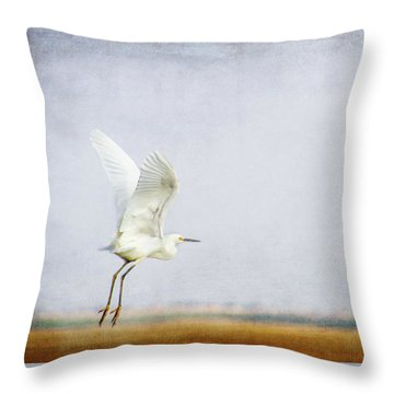 Terry Bird Decorative Pillow : Taking Off Mixed Media by Terry Davis