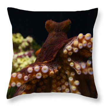 Tako Not Taco Hawaiian Octopus Throw Pillow