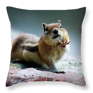 Talk To The Hand Throw Pillow