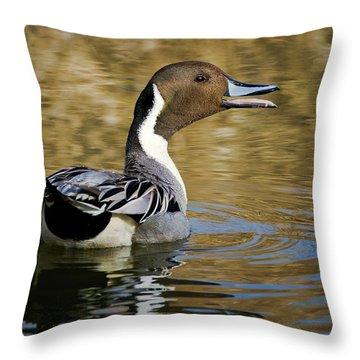 Talking Pintail Throw Pillow