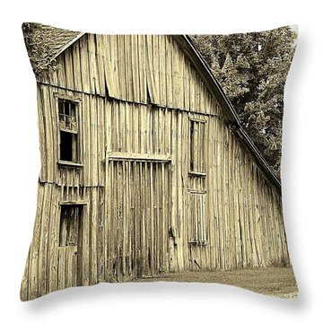 Tall Barn Throw Pillow