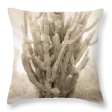 Tall Cactus In Sepia Throw Pillow