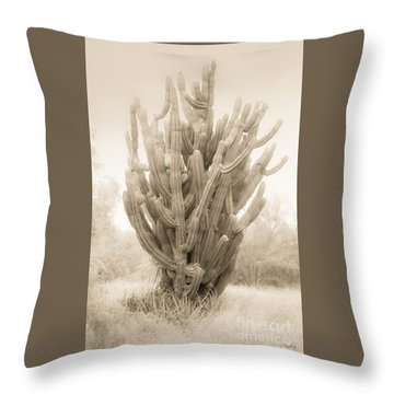 Tall Cactus In Sepia Throw Pillow