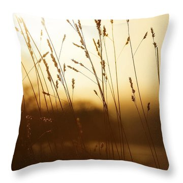 Tall Grass In The Morning Throw Pillow