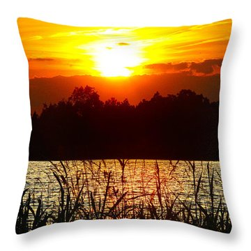 Tall Grass Sunset 2 Smith Mountain Lake Throw Pillow