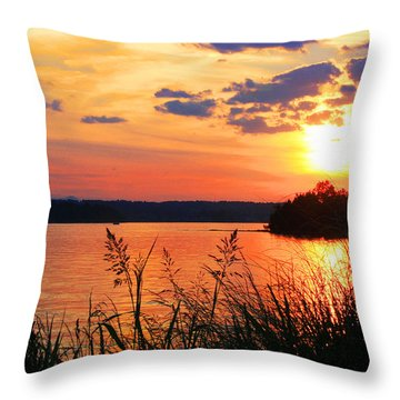 Tall Grass Sunset Smith Mountain Lake Throw Pillow