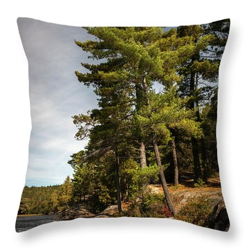 Throw Pillow featuring the photograph Tall Pines On Lake Shore by Elena Elisseeva