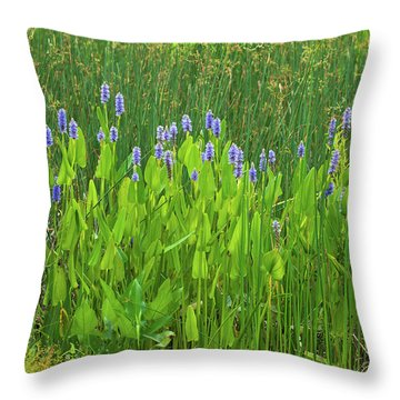 Throw Pillow featuring the photograph Tall Purple And Blue Blooming Flowers by Dennis Dame