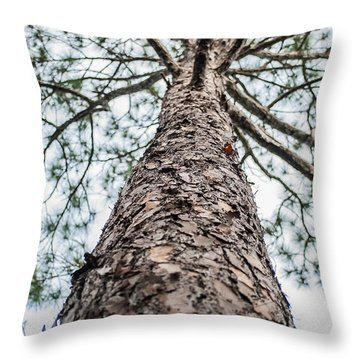 Tall Tree 4007 Throw Pillow