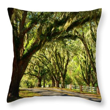 Tallahassee Canopy Road Throw Pillow by Carla Parris