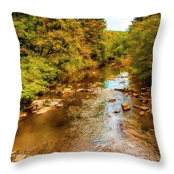 Tallulah River Throw Pillow