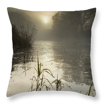 Tamar River Winter  Sunrise, Uk Throw Pillow