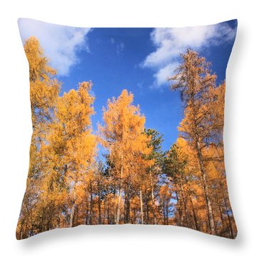 Tamarack Grove Throw Pillow by John Burk