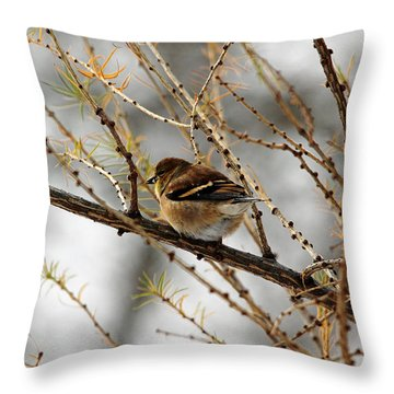 Tamarack Visitor Throw Pillow by Debbie Oppermann