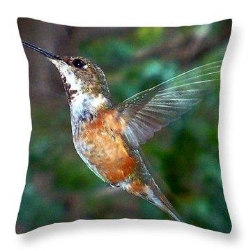 Tan Hummingbird Throw Pillow by Joseph Frank Baraba