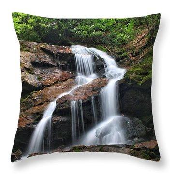 Upper Dill Falls Throw Pillow