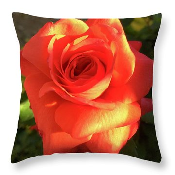 Tangerine Dream Throw Pillow by Russell Keating