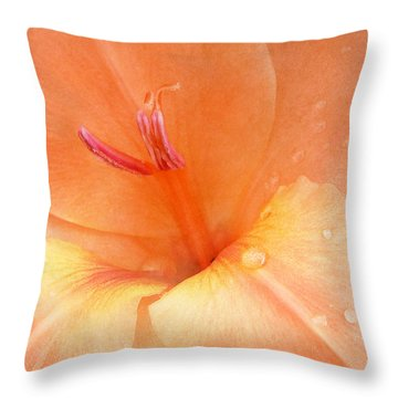 Tangerine Gladiola Throw Pillow